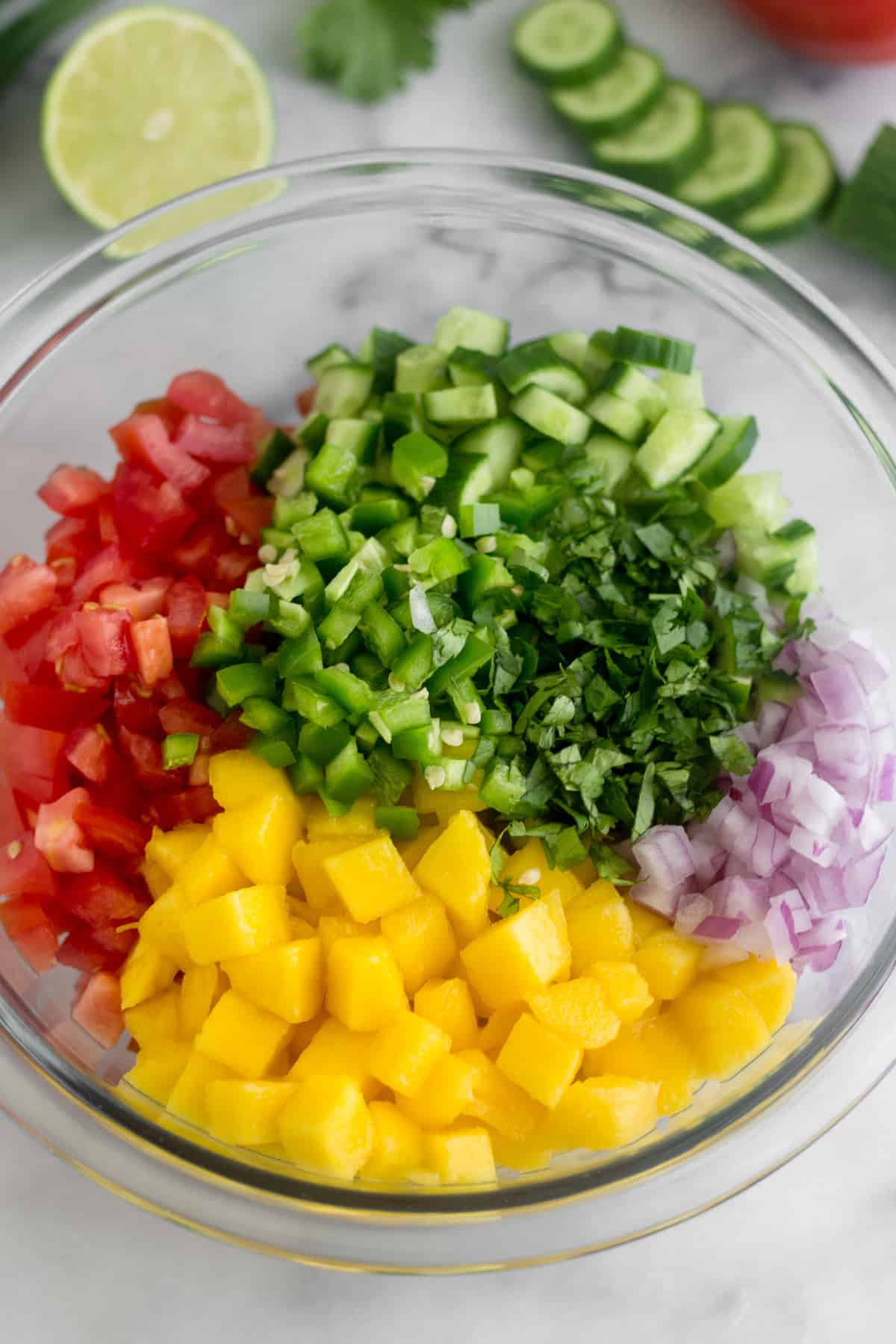 Large glass bowl filled with the components of Mango Cucumber Salsa - diced tomato, diced cucumber, diced red onion, diced mango, jalapeño, and cilantro
