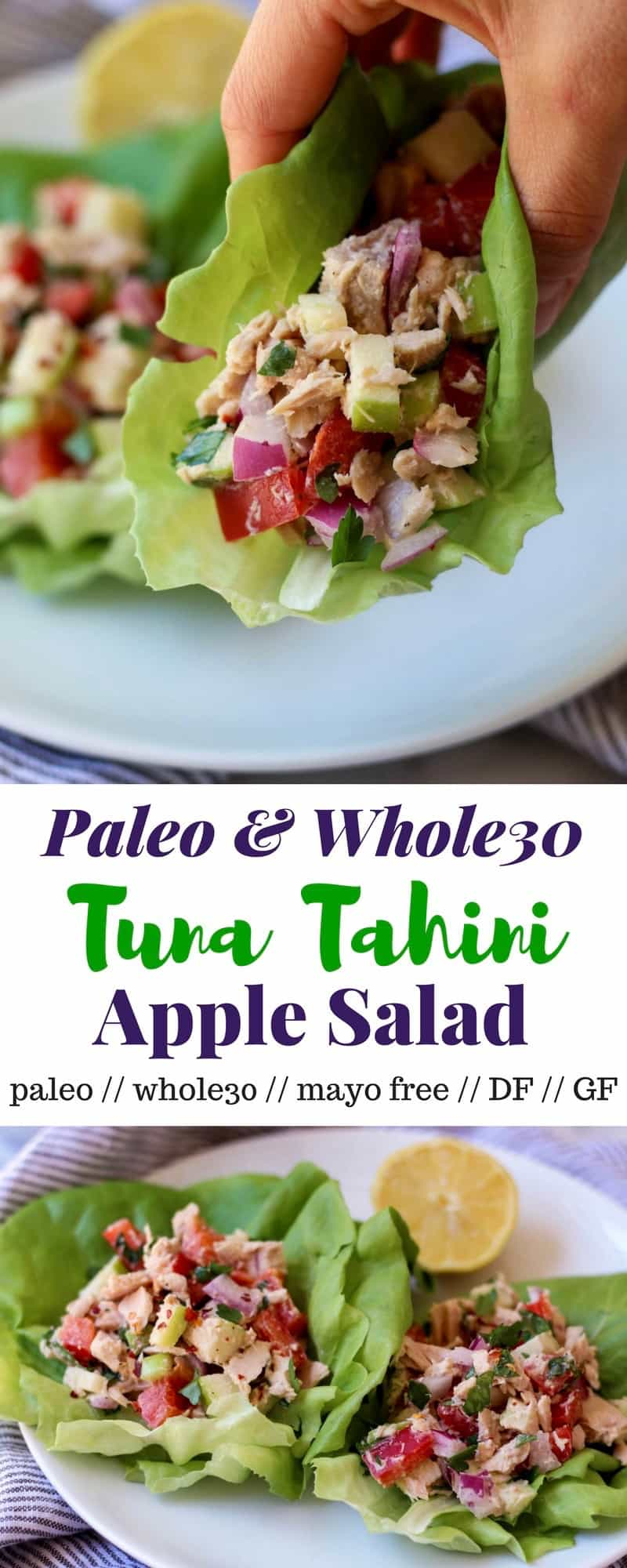 A tuna salad that is mayo free! This tuna tahini apple salad is loaded with veggies, fruit, healthy fats, and protein for an easy and on-the-go lunch made in minutes! - Eat the Gains