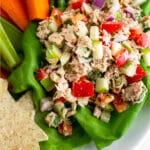 Whole30 Tuna Salad Pinterest image