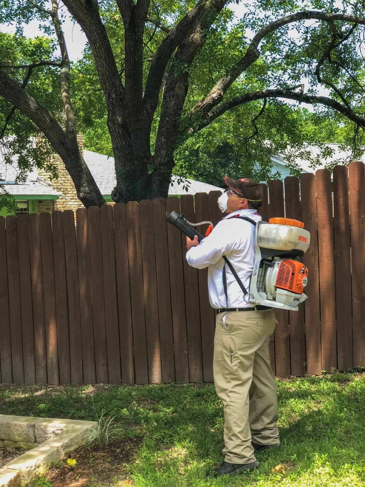 Man spraying tress with mosquito treatment