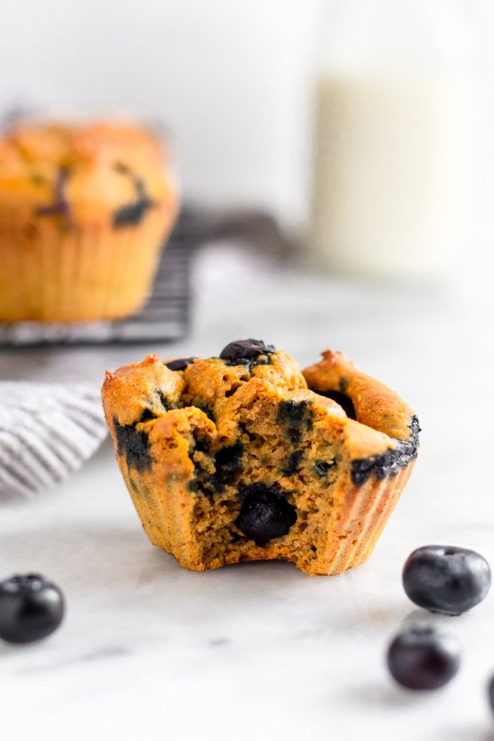 Blender blueberry protein muffin with a bite taken out of it. Behind it is a cooling rack with more muffins and a jar of milk.