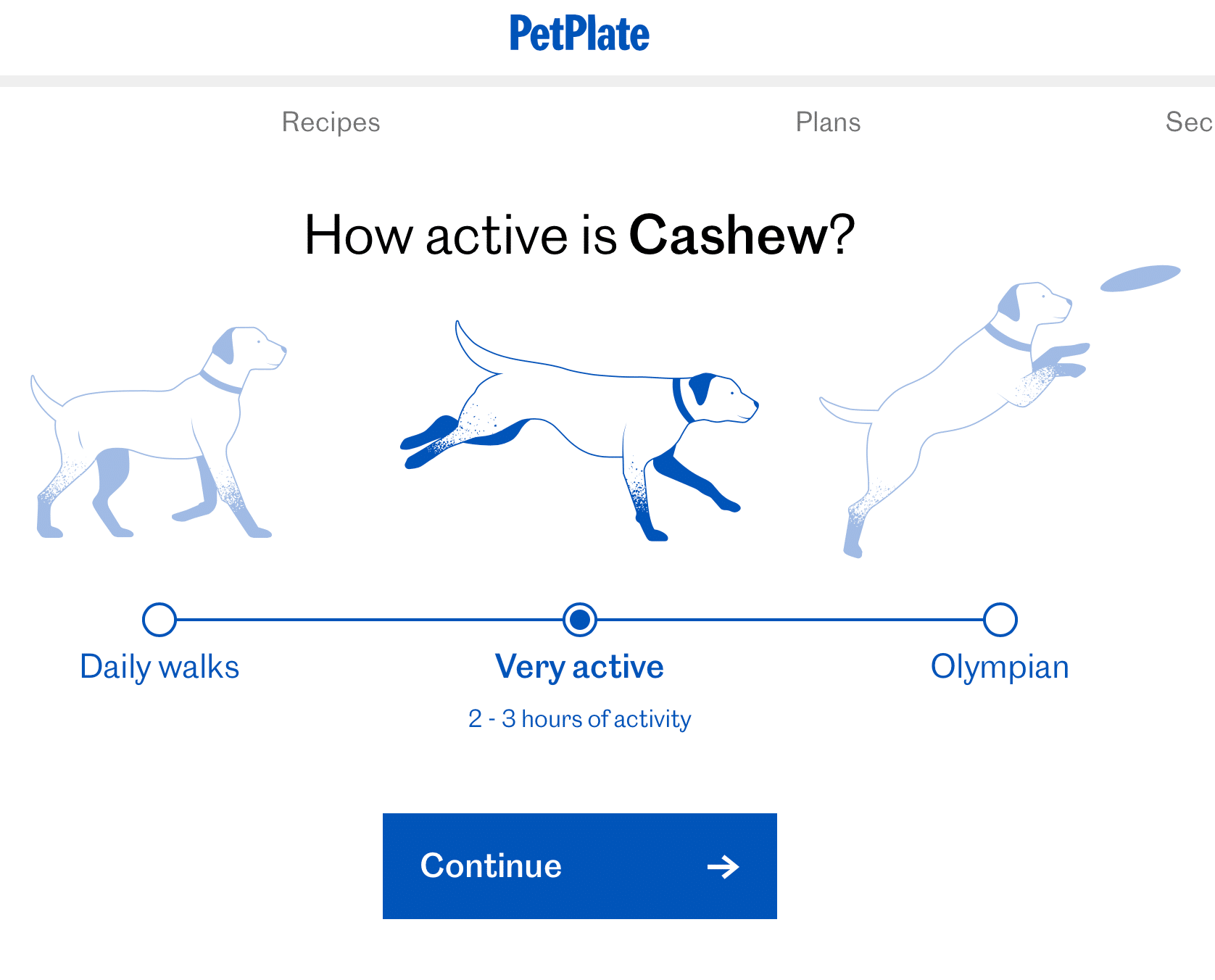 Screenshot of a questionnaire asking how active your dog is.